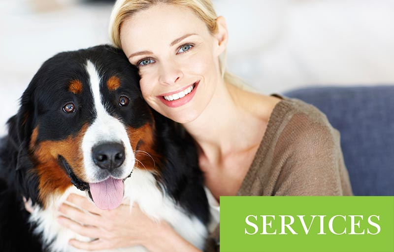 Western Veterinary Group Services