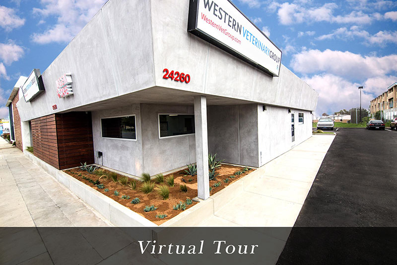 Western Veterinary Group Virtual Tour
