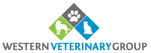 Western Veterinary Group - Full Service Veterinary Hospital in Torrance